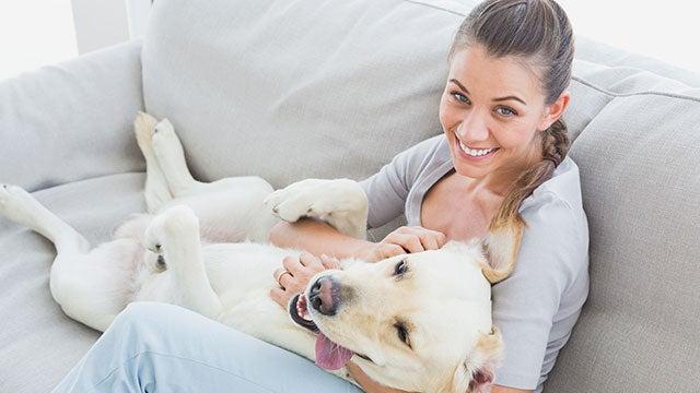 petting-dog-calms